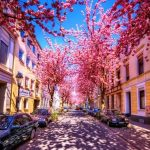 Bonn, the City of Beethoven on the Rhine